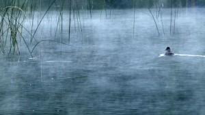 Peaceful Bonaparte Lake, tucked near Canadian border