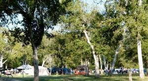 RVer Jimmy Smith reminisces about his scouting days when Cub Pack descends on Goliad State Park