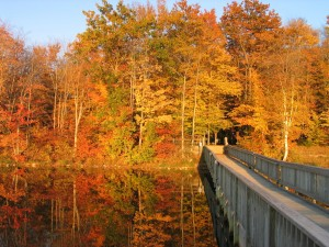 Autumn camping destination #2: Colwell Lake Campground, Hiawatha National Forest, UP Michigan