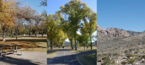 Big Bend National Park RV, tent campgrounds busy during 2009 Thanksgiving weekend