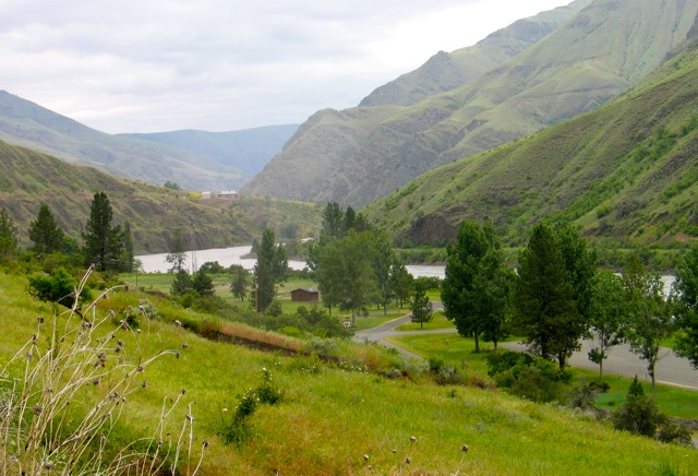 Intimate BLM campground on Idaho's Lower Salmon River
