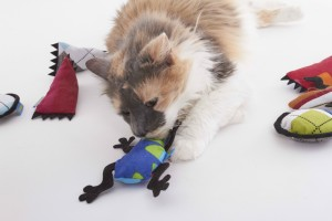 Holiday gift ideas for RVing pets, # 7: Stocking stuffers