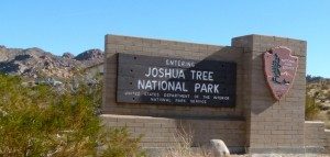 GPS is set for Joshua Tree National Park; visit with longtime friend Rachel Scott