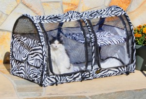 RVing with Pets, part 4 -- 'Cats travel, too'