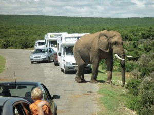 Organized RV tours, Part 3 -- Mexico, Maritime Provinces, South Africa are 'hot' RV destinations
