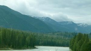 Boondocking near Bumblebee Creek in Idaho Panhandle National Forests