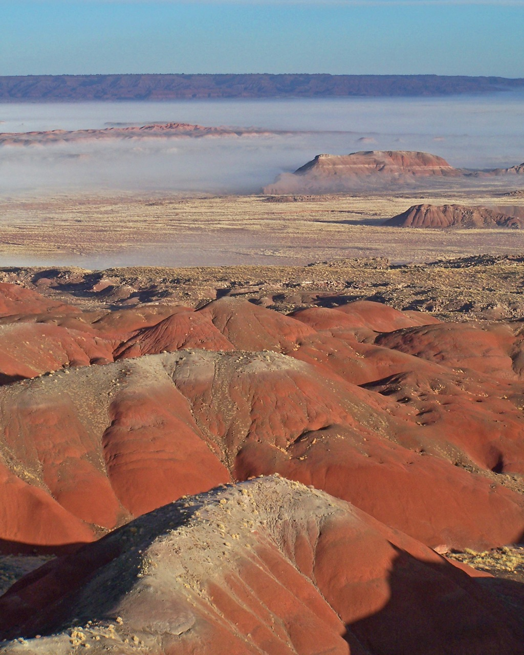 Petrified Forest National Park amazing spring, autumn RV Short Stop in desert southwest
