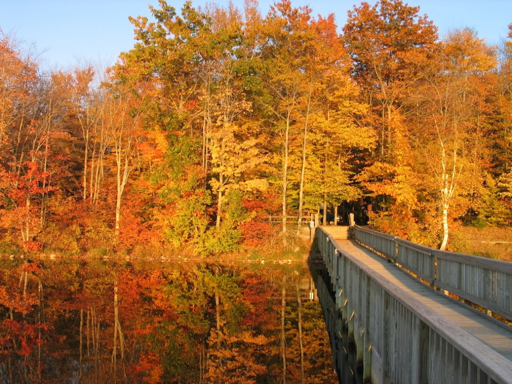 Autumn camping destination #2: Colwell Lake Campground UP Michigan