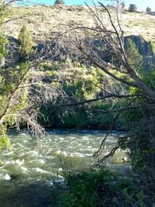 River-ChukarCpg_Juntura_JulianneGCrane