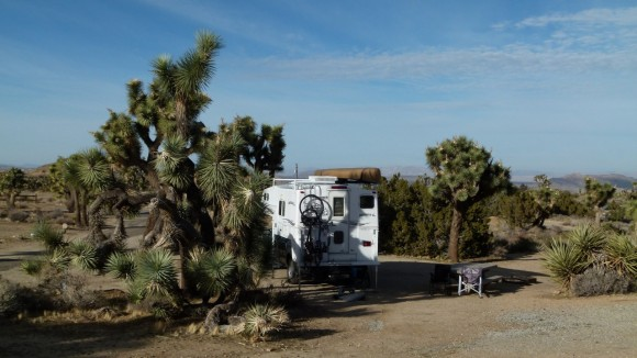 Joshua Tree National Park – Black Rock Canyon
