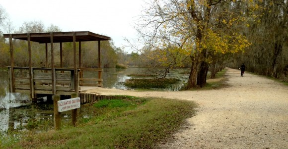 Brazos Bend (Texas) State Park, great family camping, bicycling, birding, gator watching