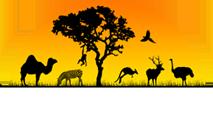 widget_logo
