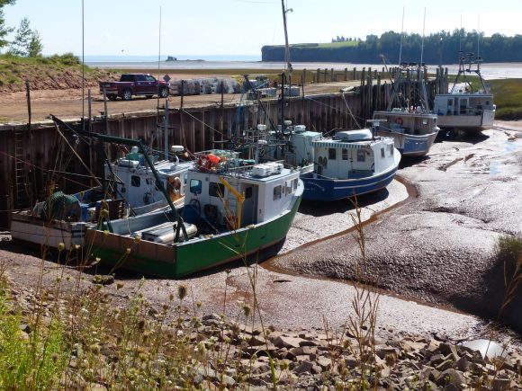 RVing the Maritimes with Kevin & Janie Justis, part 14: Bay of Fundy, Nova Scotia